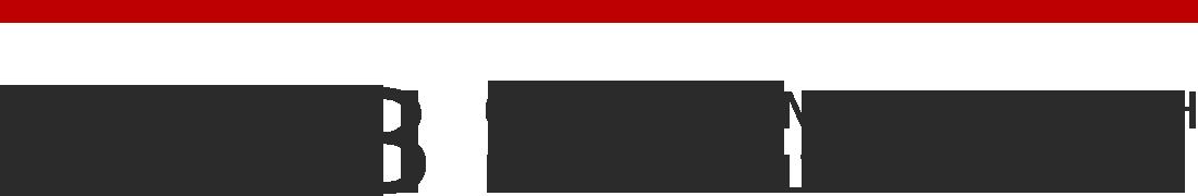 Staub GmbH Logo